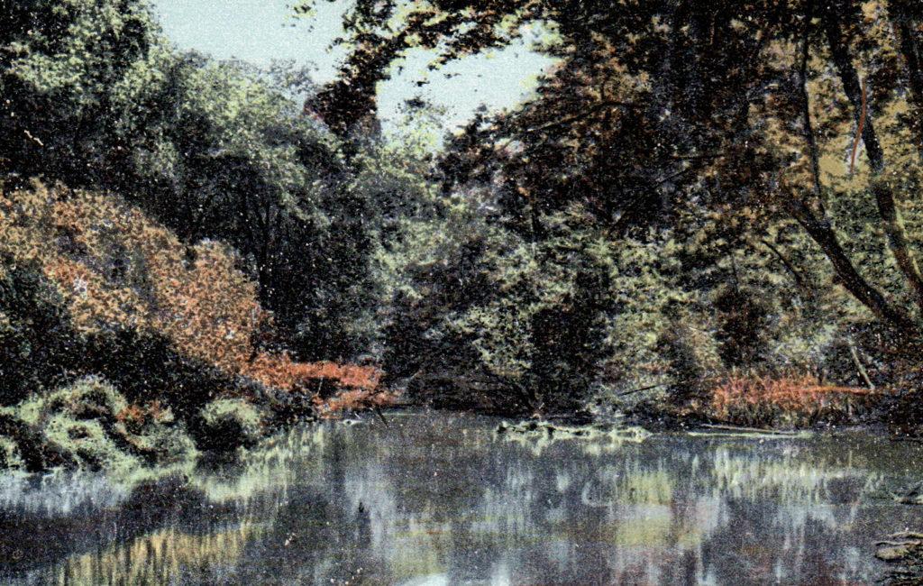 Sabatis River Near Lewiston, ME
